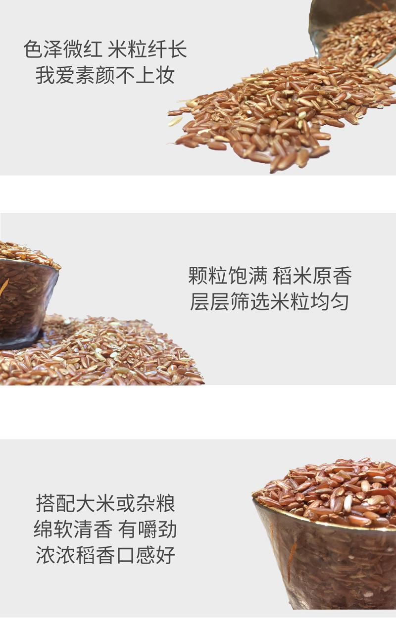 四川特产 大凉山特产 生态红米 4斤装 8斤装