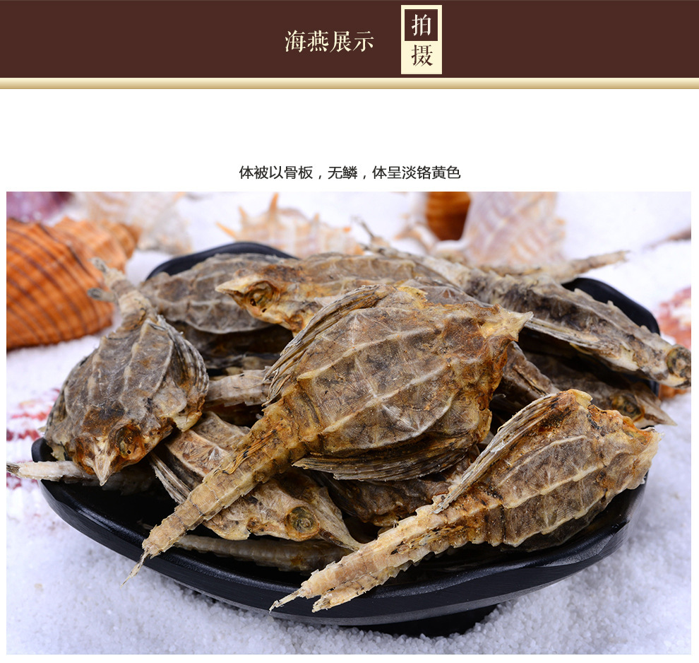 广东深圳 海行家 汕头南澳野生海麻雀海燕清水海燕泡酒料海燕海鲜500克