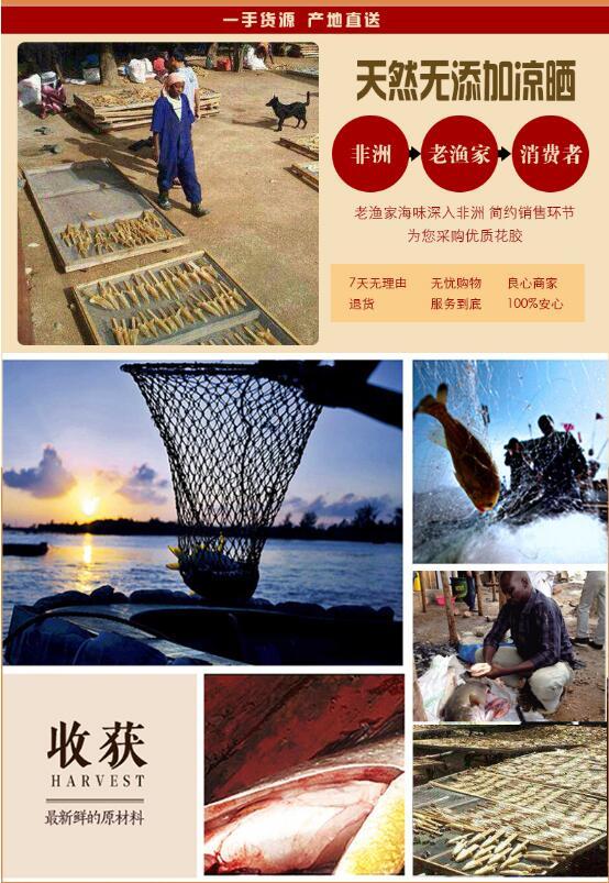广东特产 老渔家 金龙胶 野生双背胶 公肚花胶海产品