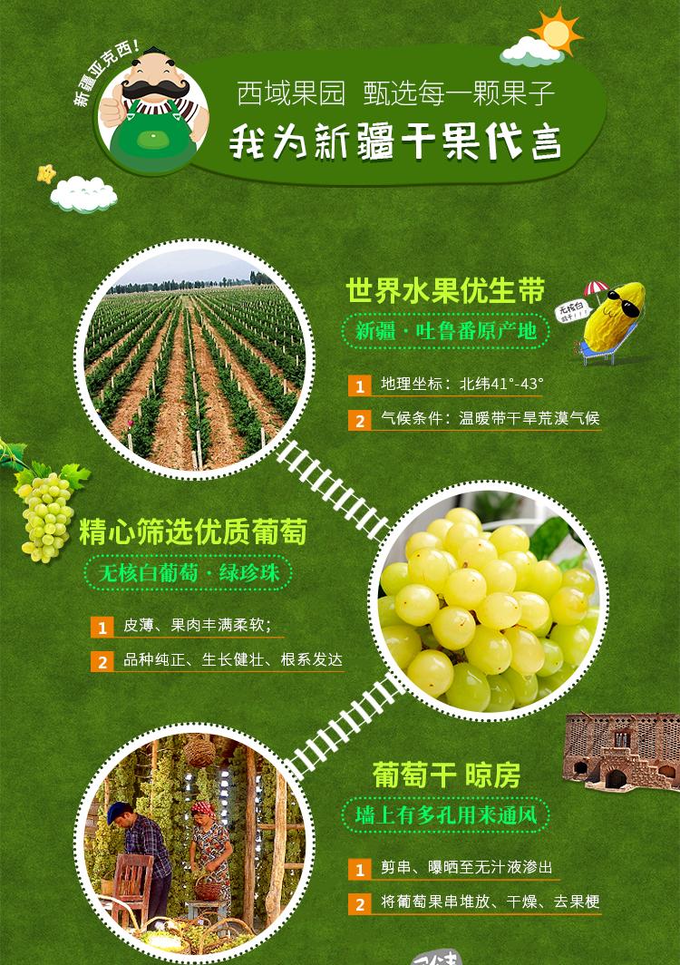 新疆特产 新疆果业果叔西域果园绿葡萄干有身份的新疆干果300g/袋*3包邮
