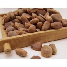 吉林特产 高品质成熟率 吉林原味一极红松子500带壳长白山坚果