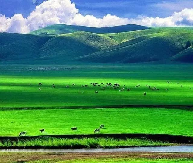 盛夏旅行:不可错过的美景地